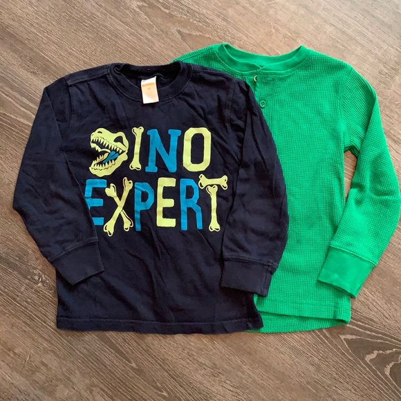 Set of 2 size 4T shirts DINO EXPERT & green